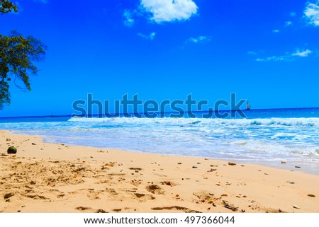 BEAUTIFUL BEACH AND TROPICAL SEA. SUMMER BACKGROUND.