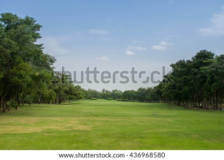 Beautiful morning light in public park with green grass field an.Beautiful morning light in public park with green grass field and green fresh tree plant perspective to copy space for multipurpose.