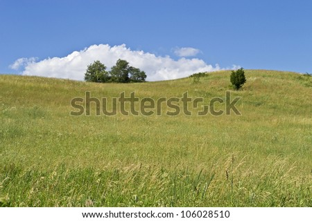 """Blue Sky Hillside"" A green hillside on a beautiful Summer day in Sussex County, New Jersey. - stock photo"