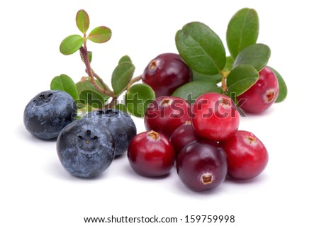 Blueberry and cowberry with green leaflets on white background - stock photo