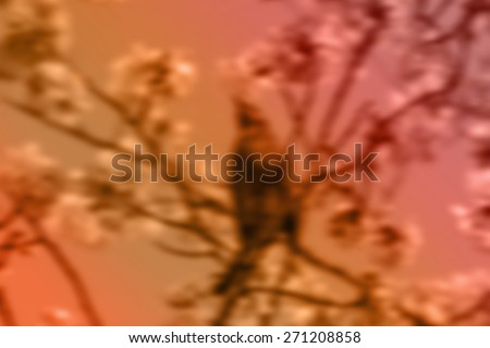 (BLUR style Abstract background) A bird in the cherry blossom tree in Japan. - stock photo