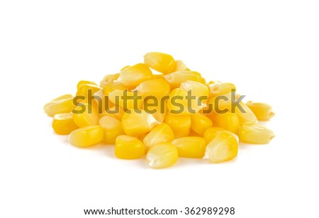 boiled sweet corn on white background