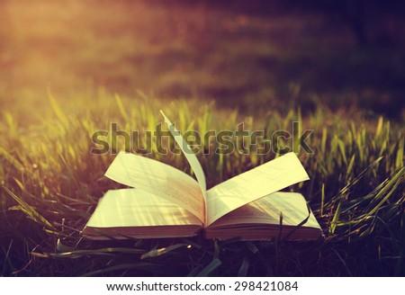 book on grass under the sun - stock photo