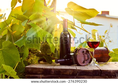 bottle and glass with red wine in vineyard - stock photo