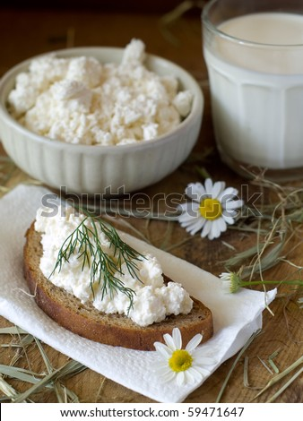 bowl of cottage cheese and glass of milk with daisy on background - stock photo
