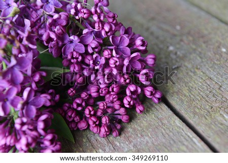 branch of lilac on wooden background