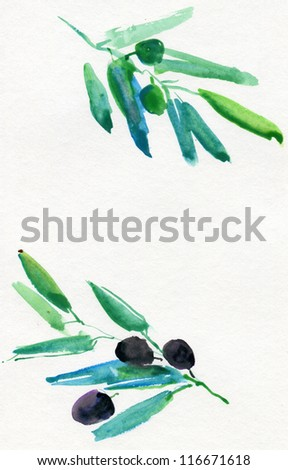 branches  green and black olives on white watercolor - stock photo