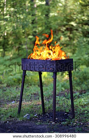 Brazier with fire. Shooting outdoors, on background of green forest.  - stock photo