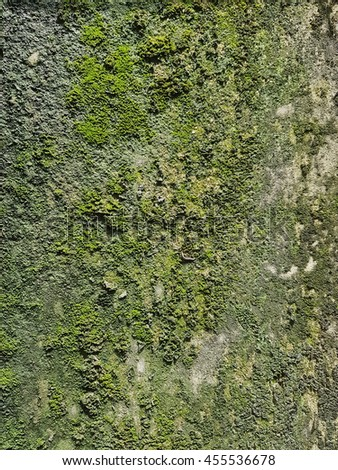 Brick Wall with Moss - stock photo