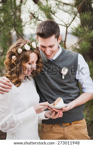 bride and groom cutting their wedding cake and folding plate. beautiful wedding cake. wedding couple eating. wedding reception - stock photo