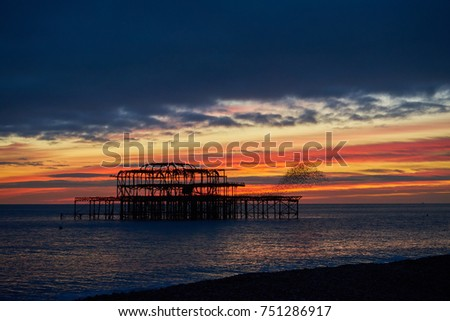 Brighton and Hove West Pier at Sunset, with hundreds of Starlings flying in formation