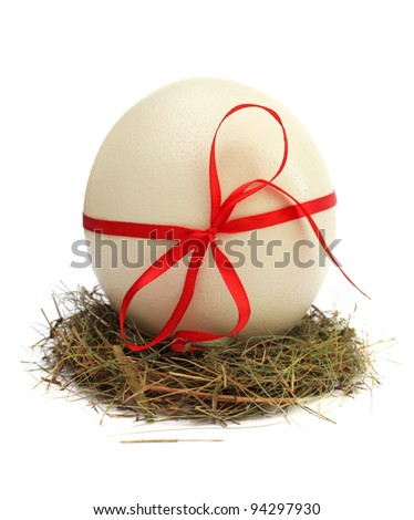 Brown egg in a nest isolated on a white background - stock photo