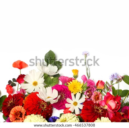 Bunch of beautiful flowers on on a white background