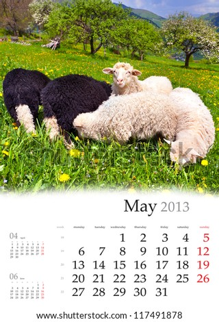 2013 Calendar. May. Beautiful spring landscape with flock of sheeps - stock photo