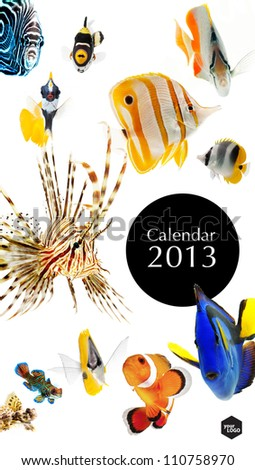 2013 calendar, sea marine life concept, cover page - stock photo
