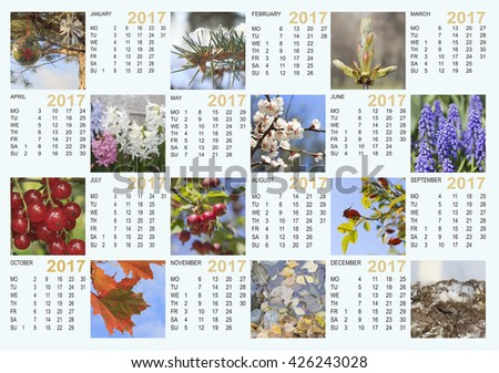 Calendar 2017 with nature images: contains the months and days of the week. The layout for printing, horizontal. - stock photo