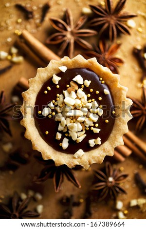 Chocolate tart  with roasted cashew nuts - stock photo