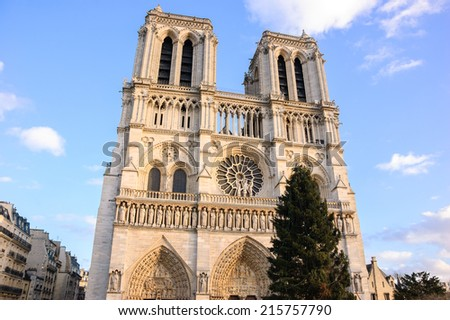 Christmas tree in front of the Notre Dame cathedral in Paris in evening soft light, - stock photo
