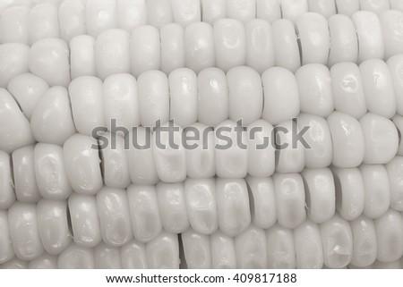 close-up black and white corn background - stock photo