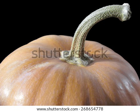 close-up of pumpkin isolated on black - stock photo