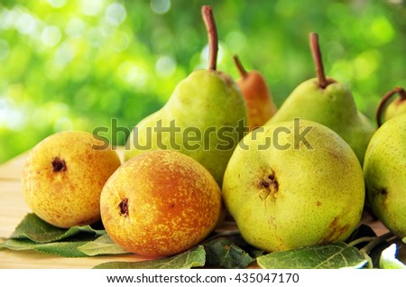 close up of ripe ears  - stock photo