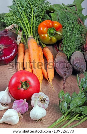 Close up view of nice fresh vegetables.   Shot in a studio.