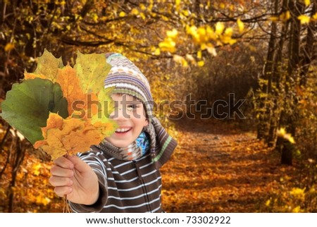 Closeup of young boy playing with Autumnal leaves. - stock photo