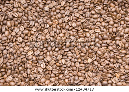 coffee beans - background