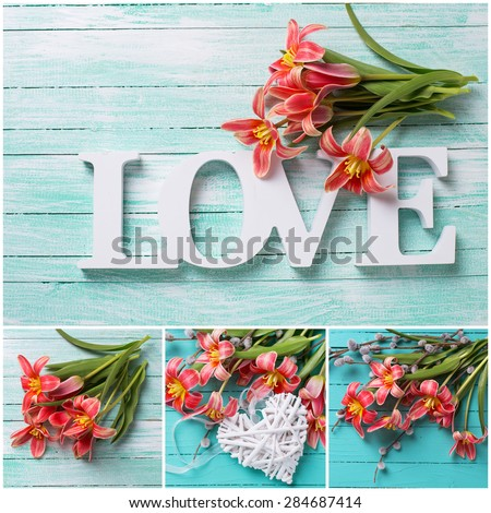Collage with   spring pink tulips flowers,  word love  and decorative heart  on turquoise  painted wooden planks. Selective focus.  - stock photo