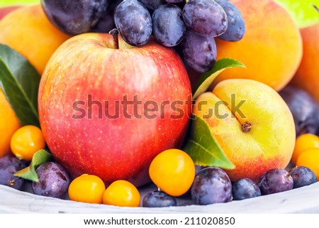Colorful collection of fruits, close-up - stock photo