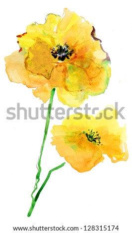 Colorful Yellow Poppy, watercolor illustration - stock photo