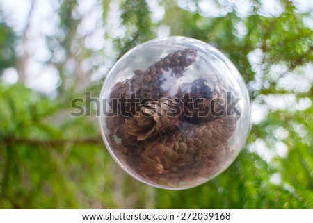 concept  protection of coniferous forest - stock photo
