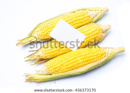corn with blank note isolated on white background
