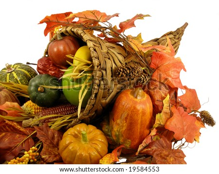 Cornucopia: Thanksgiving decoration, horn of plenty isolated on white background - stock photo