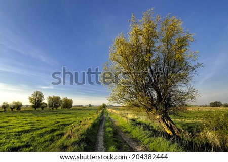 Countryside view of the meadows and cultivated fields - stock photo