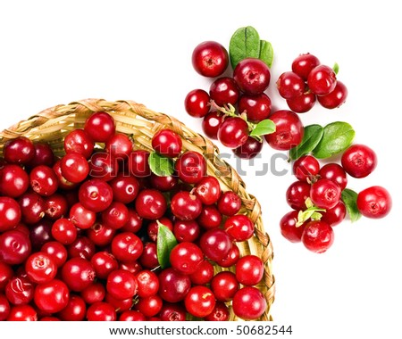 cranberries  isolated on white background   - stock photo