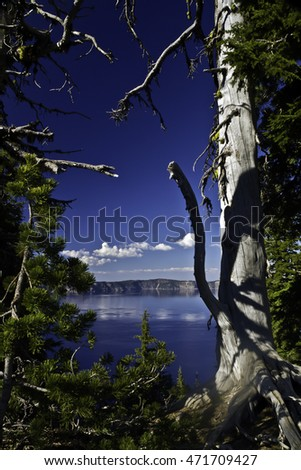 Crater Lake and mountains behind, framed between alpine trees at Crater Lake Lodge, Crater Lake, Oregon