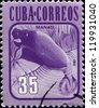 CUBA - CIRCA 1981: A  stamp printed in Cuba shows a manatee (manati, Trichechus manatus), circa 1981 - stock photo