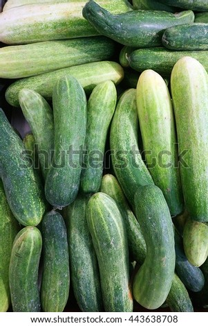 Cucumber scattered local market of Thailand background.
