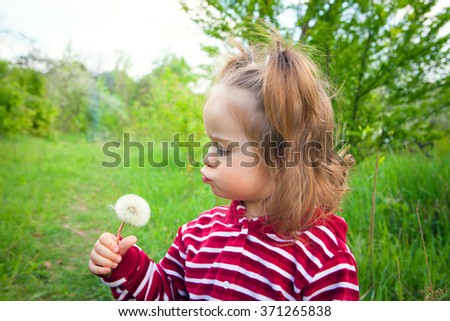 cute little girl walking through a meadow and blowing on a dandelion
