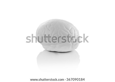 3d brain isolated on white - stock photo