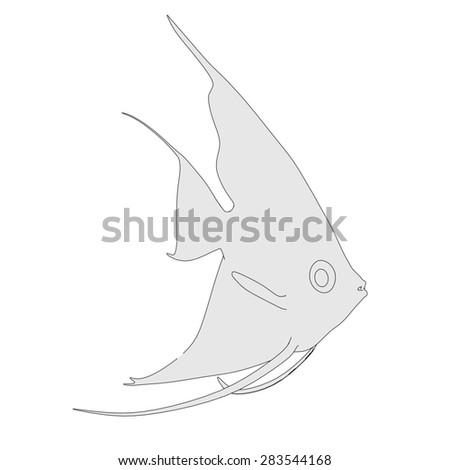 2d cartoon image of pterophyllum altum - stock photo
