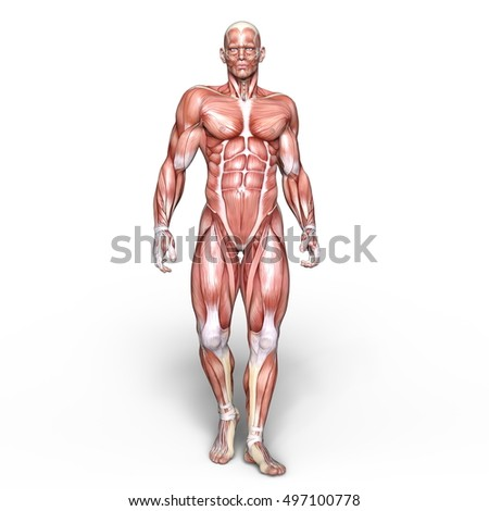3D CG rendering of a male lay figure