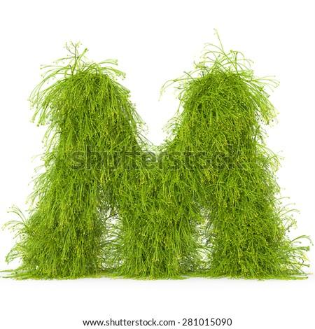 3d decorative nature letter M - stock photo