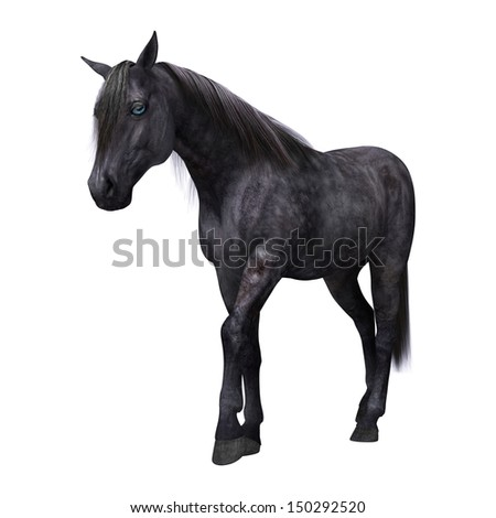 3D digital render of a beautiful black horse with blue eyes isolated on white background
