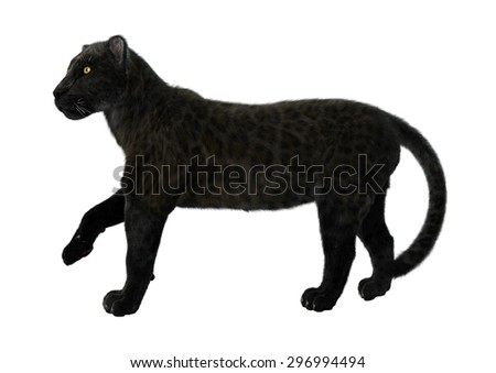 3D digital render of a big cat black panther walking isolated on white background