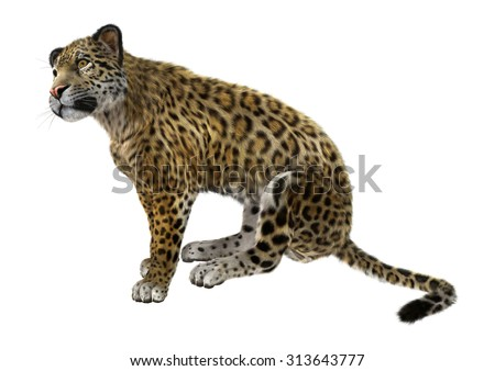 3D digital render of a big cat jaguar sitting isolated on white background