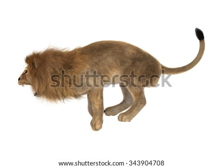 3D digital render of a big cat male lion isolated on white background - stock photo