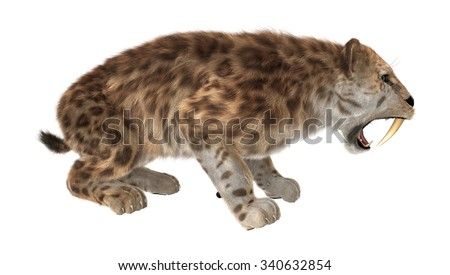3D digital render of a big cat sabertooth roaring isolated on white background