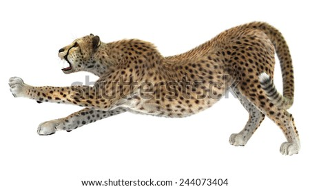 3D digital render of a cheetah isolated on white background